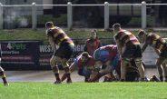 Carmarthen Quins 29 Cardiff 7